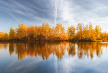 Оранжевое небо Люторичей